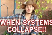 systems-collapse